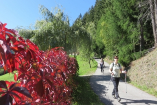 Höfewanderung im Ultental
