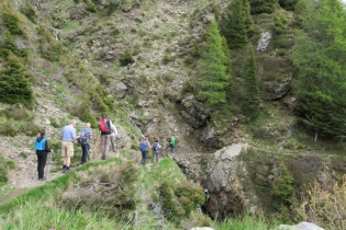 Wanderung zu den Videgger Assen