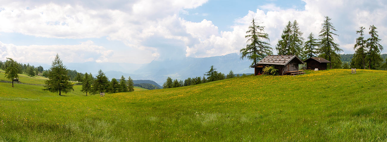 Meadows above Scena and wooden hut in a sunny summer day