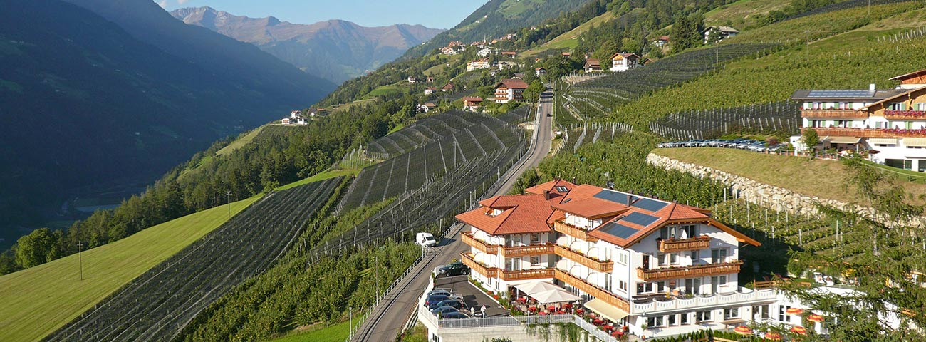 View of Hotel Grafenstein in the vineyards of Scena near Merano