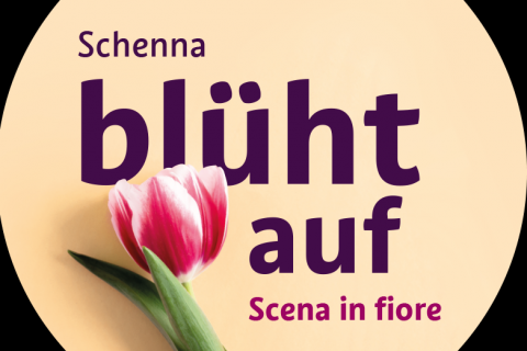 Spring time at Schenna
